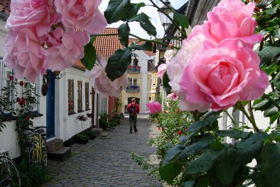 """""""Den glade vandrer..."""" - En idyllisk gåtur i Aalborgs gamle kvarter. Fotograf: Susanne Randers"""