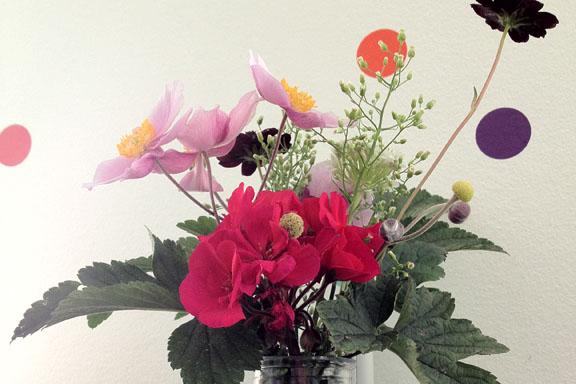 Jeg nyder at plukke blomster til mig selv fra haven. Fotograf: Susanne Randers