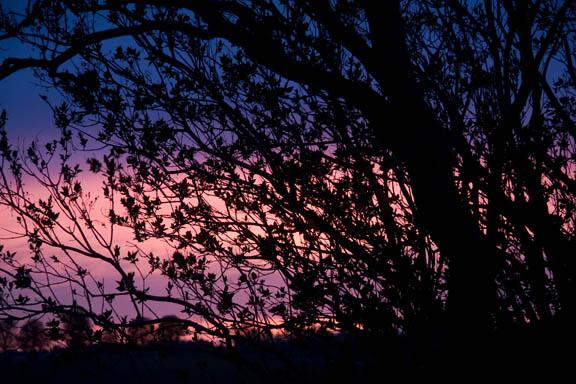 Solnedgang over marken ved min landsby. Når jeg ser på, at solen gå ned over marken, føler jeg den største sammenhørighed mellem naturen, universet og skaberkraften i mig selv. Fotograf: Susanne Randers