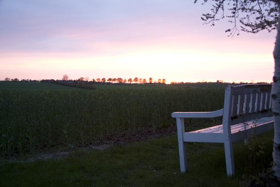 Solnedgang over marken ved Ølby Landsby - set fra markkanten hos vores bagbo. Når jeg sidder og ser, solen gå ned over marken, føler jeg den største samhørighed mellem naturen, universet og skaberkraften i mig selv. Fotograf: Susanne Randers