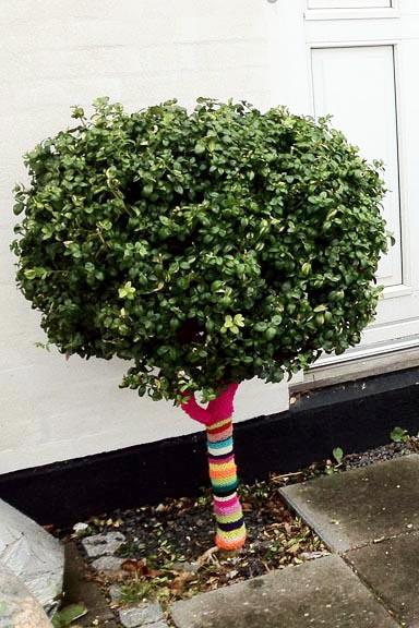 Yarnbombing på havens træer - her på buksbom foran hoveddøren. Fotograf: Susanne Randers