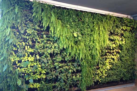 Indgangspartiet i Soho Kontorhotel: En levende grøn væg. Fotograf: Susanne Randers