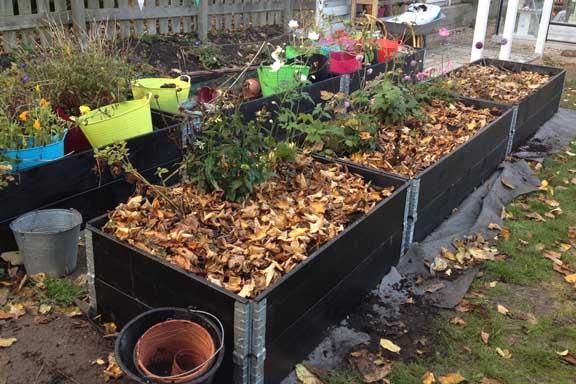 Højbedene tilplantet i efteråret med stauder - og beskyttet med blade. Fotograf: Susanne Randers