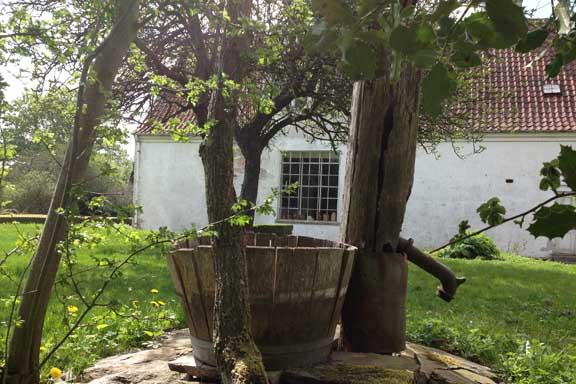 Idyllisk view mod det store vindue i atelieret - med brønd og vandpumpe i forgrunden. Fotograf: Susanne Randers
