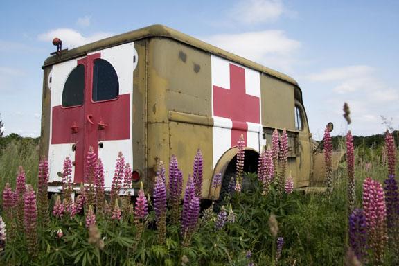 Lupiner og gammel smuk ambulance på Frydenborgvej i Hillerød. Fotograf: Susanne Randers