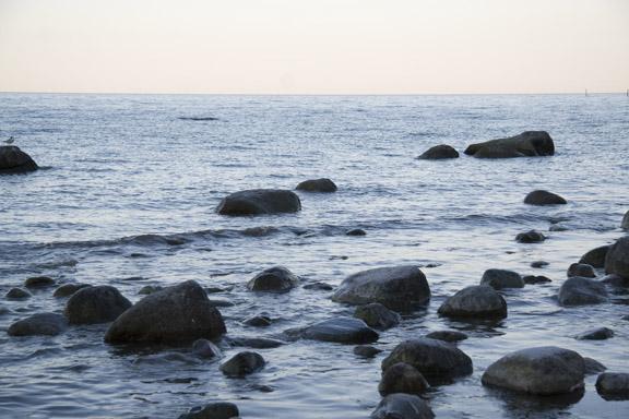 Møns klint - smukke sten i vandkanten. Fotograf: Susanne Randers