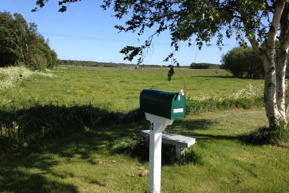 En postkasse med udsigt og indsigt i markkanten. Fotograf: Susanne Randers