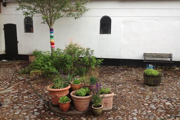 Regnbuestrik på træet bagved krydderurterne lyser op i gården. Fotograf: Susanne Randers