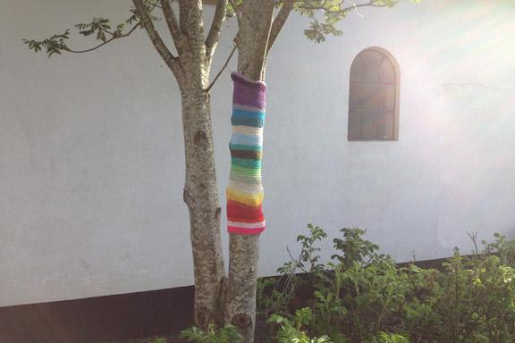 Yarnbombing regnbuestrik på træ i aftensolen. Fotograf: Susanne Randers