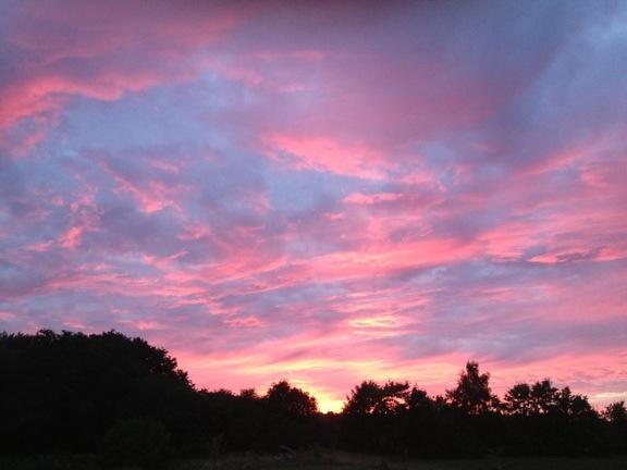 Solnedgang på Læsø.jpg