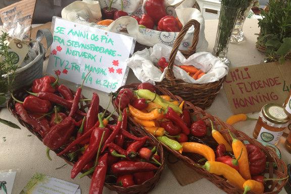 Chili fra Urtopia Frilandsurter på høstmarkedet hos Engvang Frugt. Fotograf: Susanne Randers