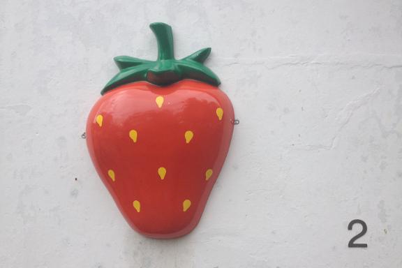 Fint jordbær som facadebeklædning på gården hos Engvang Frugt. Fotograf: Susanne Randers
