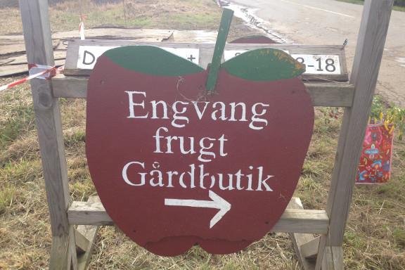 Til høstmarked hos Engvang Frugt Gårdbutik. Fotograf: Susanne Randers