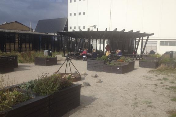 Opdagelsen med udekøkken, køkkenhaver, grille, bålsteder og masser af plads til fri leg - på gourmet kokkeskole med Køge Kyst i Opdagelsen på Køge Havn. Fotograf: Susanne Randers