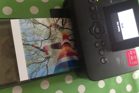 Canon Selphy CP900 fotoprinter. Fotoudskrivning af den blå farve. Fotograf: Susanne Randers