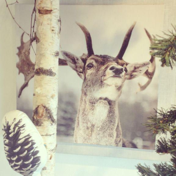 Miljøbillede fra Stof & Stil med det lækreste dyreprint af en hjort. Fotograf: Susanne Randers